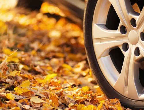 Fall Cleanup and Maintenance for Your Car